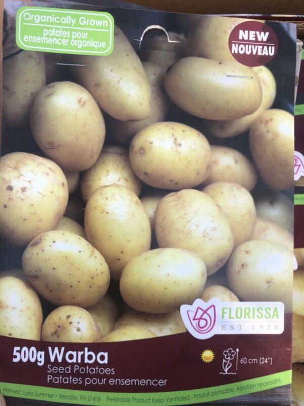 product photo of organic warba seed potatoes